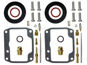Sno-X Carburetor repair kit Ski-Doo